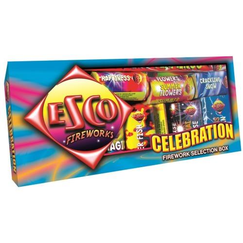 6009_celebration_box