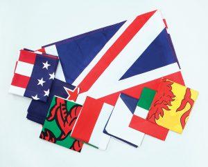 Summer of Sport Flags.